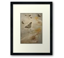 Butterfly Delight  Framed Print