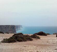 Nullarbor cliffs by mattb233