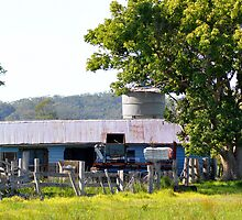 The Old Milking Shed by Brandie1