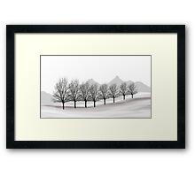 649 Framed Print