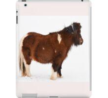 Pony in the Snow iPad Case/Skin