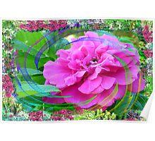 Rose Swirl In My Flower Garden Poster