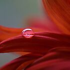Clear Red Drop by AnnieSnel