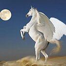 Pegasus Moon by David VanHattem