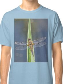 Dragonfly resting 2 Classic T-Shirt