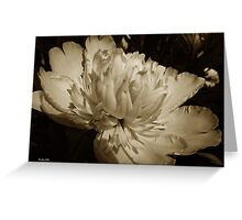 Sepia Peony Flower Greeting Card