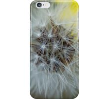 Dandelion in Alaska iPhone Case/Skin