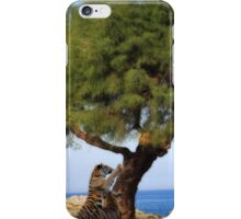 The communal scratching post iPhone Case/Skin