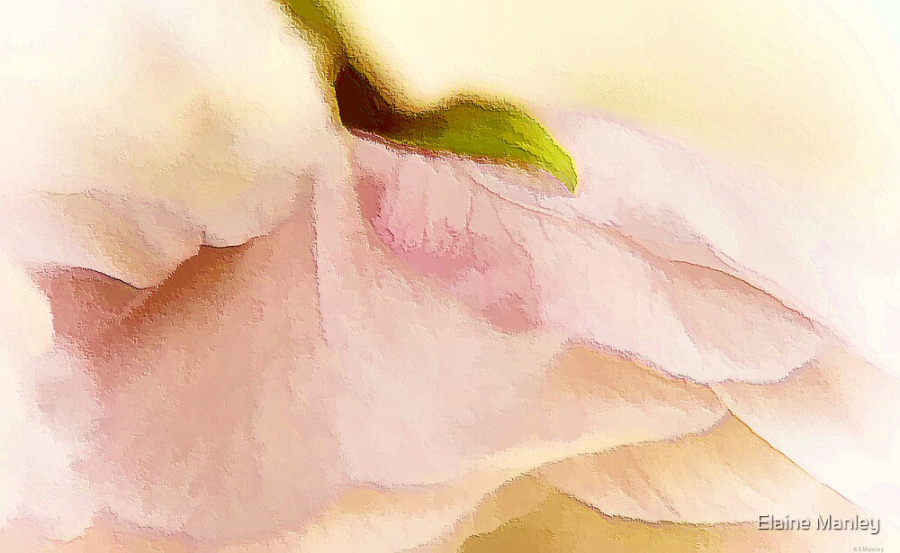 Touch of Love by Elaine  Manley