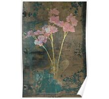 Weathered Orchids Poster