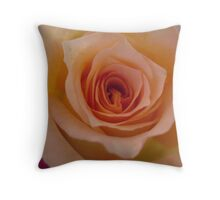 Please accept with fond affection Throw Pillow
