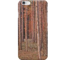 Woodlands at Dusk iPhone Case/Skin