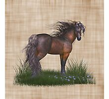 Horse in the Wild, tote, throw and tablet Photographic Print