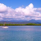 Port Douglas across the harbour.  by Virginia McGowan