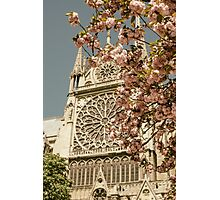 Notre Dame in Spring Photographic Print