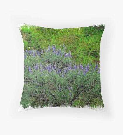 Valley Spring Colorzzzzz Throw Pillow