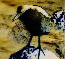 Waynes Powells Kingfisher by David M Scott