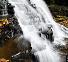 Vertical Waterfalls Landscape by Christina Rollo
