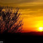 Sunset Stunner in Northern California by XanthicAmber
