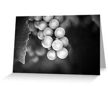Berries in Black  Greeting Card