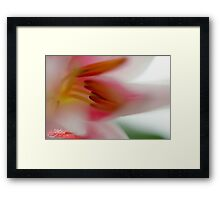 Dreaming about Spring Framed Print