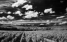 Blaceret, France [Pseudo-IR] by George Parapadakis (monocotylidono)