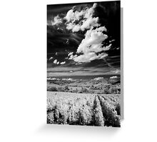 Blaceret, France [IR] Greeting Card