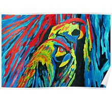 MACAW'S (oilpainting) Poster