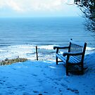 Seat in the Snow by TREVOR34