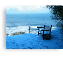 Seat in the Snow Canvas Print