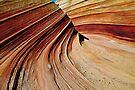 Wave-8 by Zane Paxton