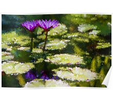 Waterlilies Impressions – Purple Duo Shimmer Poster
