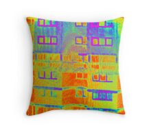 Ashfield Valley Facade Throw Pillow