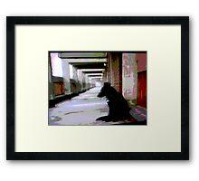 Ashfield Valley Dog Framed Print