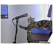 Rock 'n Roll Feline... Poster