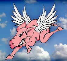 When Pigs Fly! by ACImaging