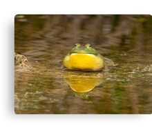 Ribbit, Ribbit Canvas Print
