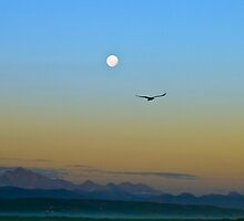 Plett Sunset by Selsong