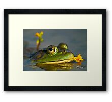 Smelling The Flowers Along The Way Framed Print