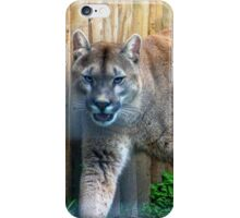 Cool cougar iPhone Case/Skin