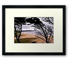 The Loe Framed Print