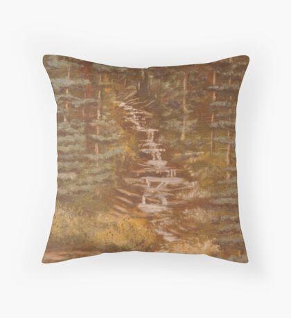 St. Marrys Falls,Colorado Springs,Colorado,acrylic painting Throw Pillow