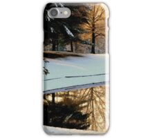 Winter Reflections   ^ iPhone Case/Skin