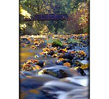 Card: Like A Bridge by USGolfers