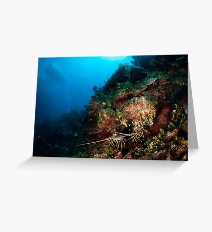 Lobsters den Greeting Card