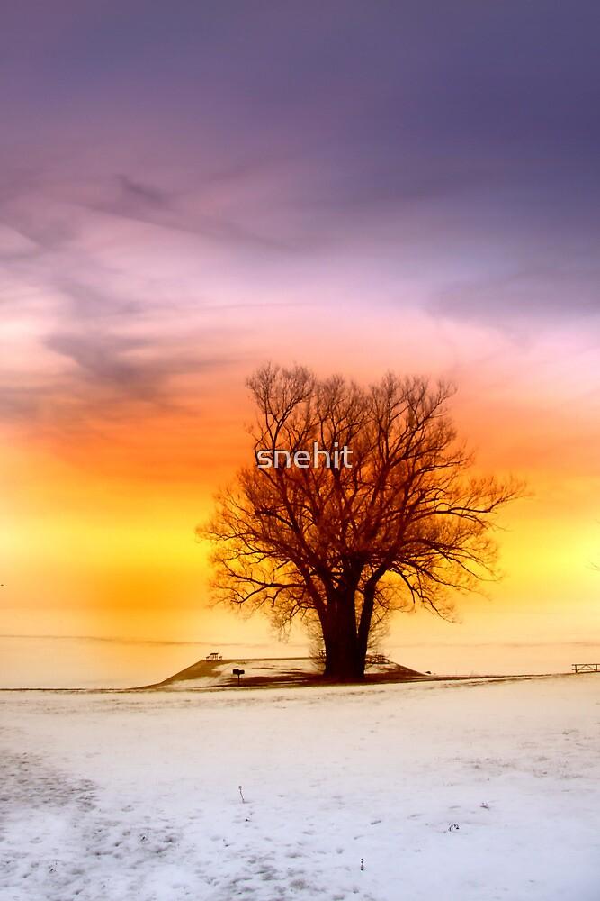 Single tree by snehit