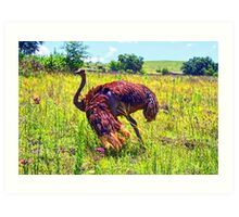 """At Home On The Range- Gauteng, South Africa"" Art Print"