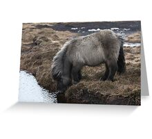 Having a Drink! Greeting Card