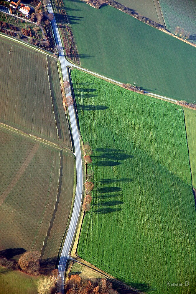 More Autumn Shadows, Bavaria by Kasia-D