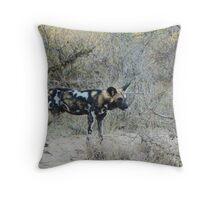 African Wild Dog 2 - Wild Afrika Throw Pillow